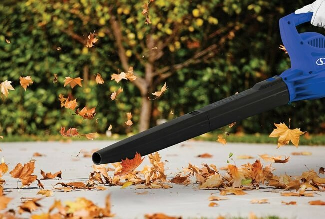 1617809141 Best Electric Leaf Blowers 1