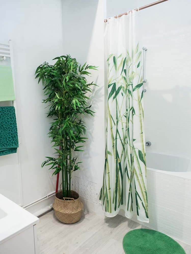 1617830612 Plants You Can Grow in the Shower