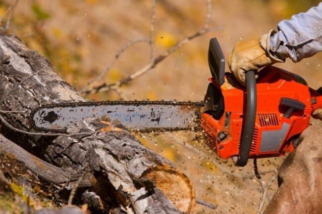 1617890102 The Best Chainsaw Chain to Keep Your Project Going http://www.bobvila.com/articles/best-chainsaw-chain/
